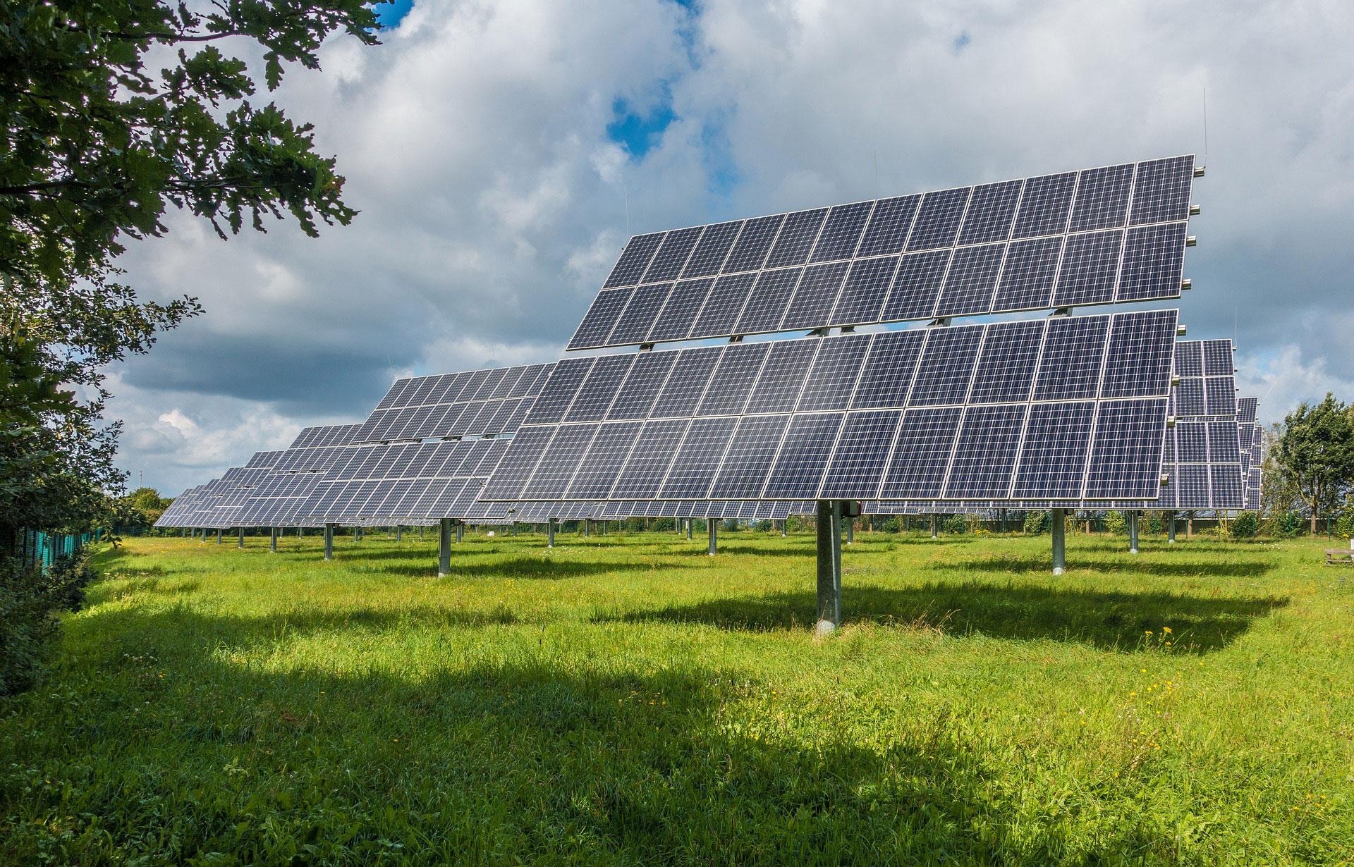 Das Bild zeigt eine Freiflächen-Solaranlage mit Grasfläche unter den Panels.